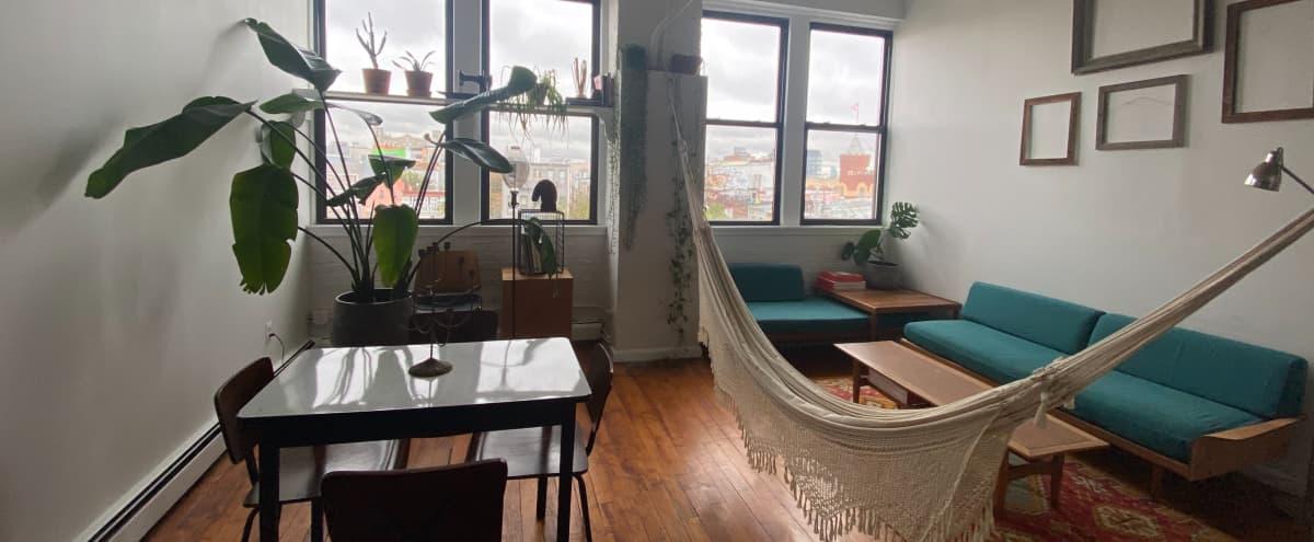 Brooklyn Artist Loft - Central Brooklyn Hub in Brooklyn Hero Image in Bushwick, Brooklyn, NY