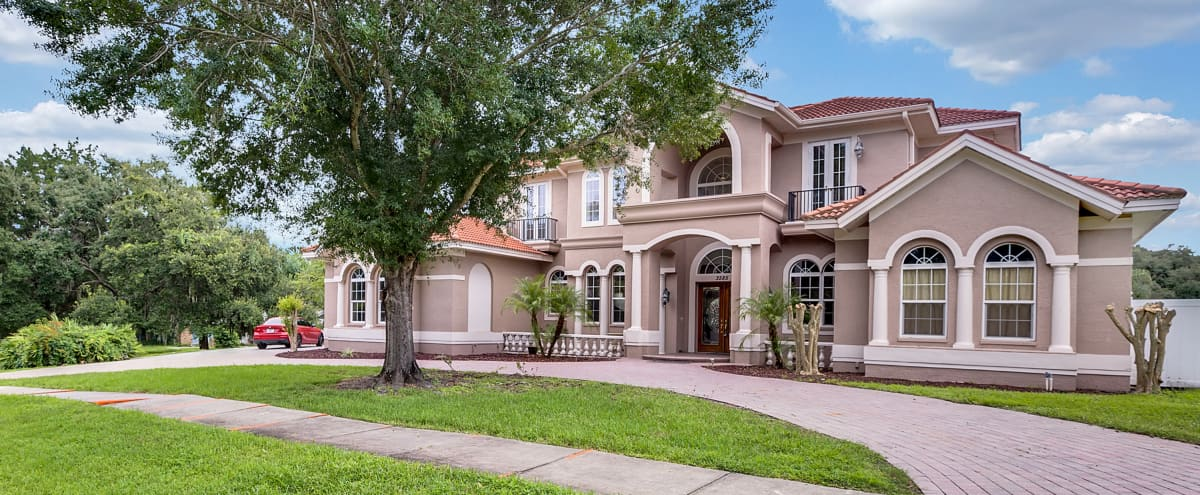 Luxury 5BR Pool/Spa/Tiki Hut Mansion in Safety Harbor Hero Image in undefined, Safety Harbor, FL