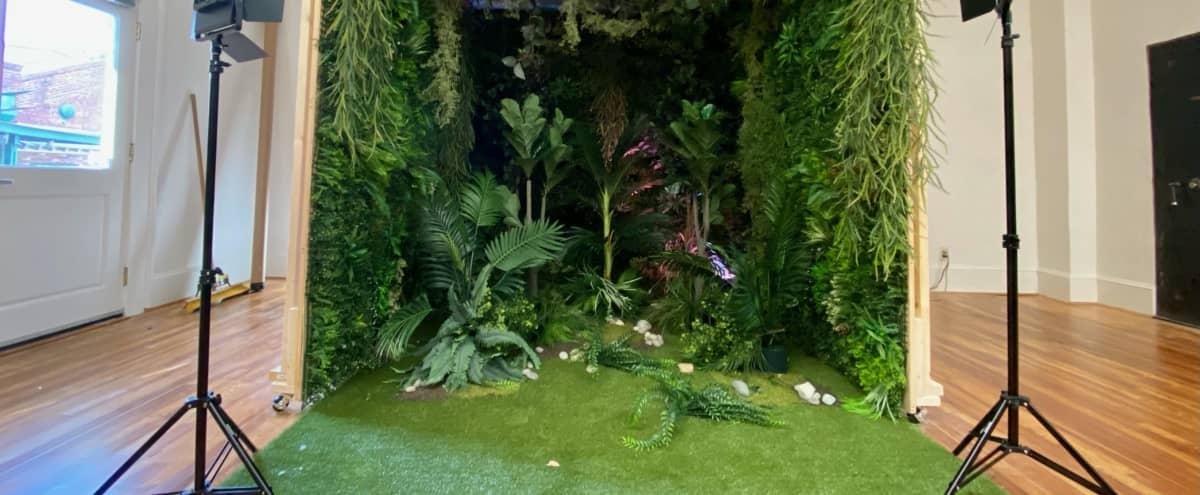 Forrest / Jungle Scene in Atlanta Hero Image in English Avenue, Atlanta, GA