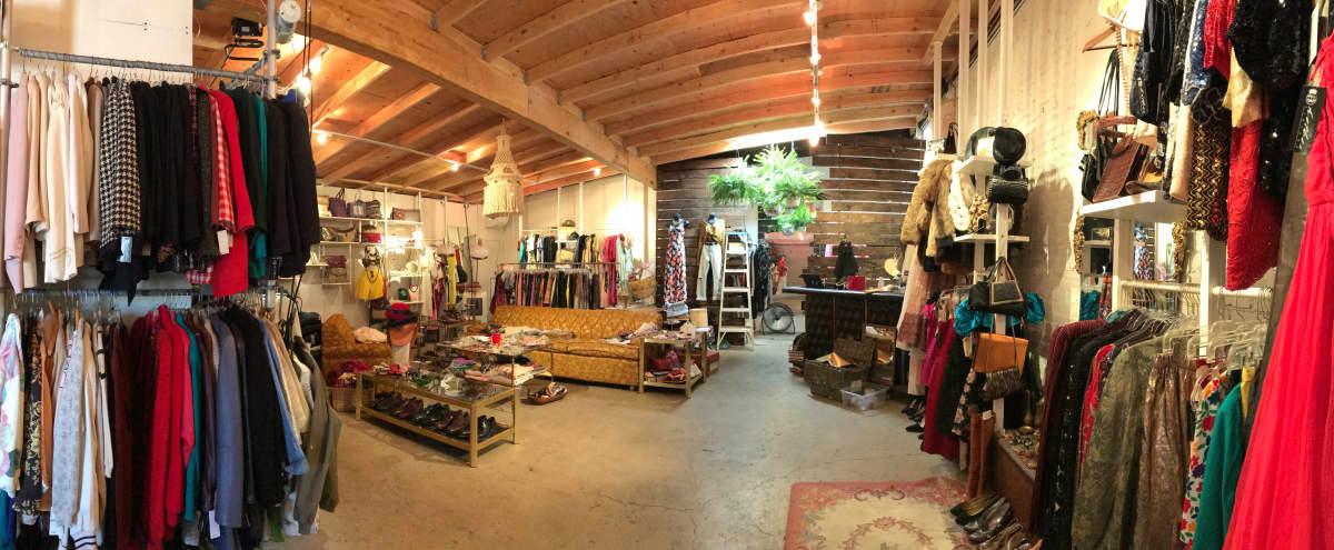 Spacious Vintage Showroom Hideaway in south pasadena Hero Image in undefined, south pasadena, CA