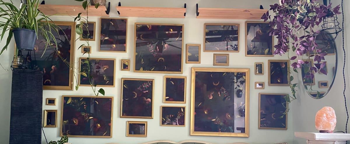 """Habitat"" Plants Aplenty, Quiet Artistic Home with Studio Room in Vancouver Hero Image in East Vancouver, Vancouver, BC"