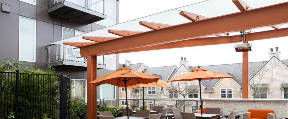 Roof Deck in Redmond in Redmond Hero Image in Downtown, Redmond, WA