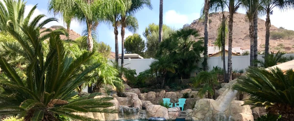 Backyard Tropical Oasis in Escondido Hero Image in Cloverdale, Escondido, CA