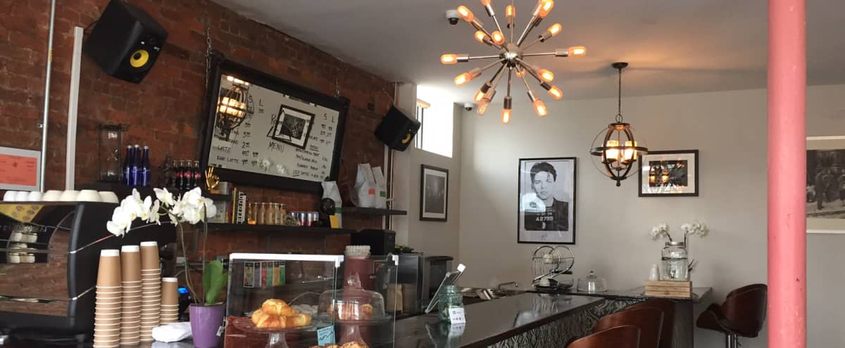 Spacious Cafe in the Heart of Brooklyn in Brooklyn Hero Image in Flatbush - Ditmas Park, Brooklyn, NY