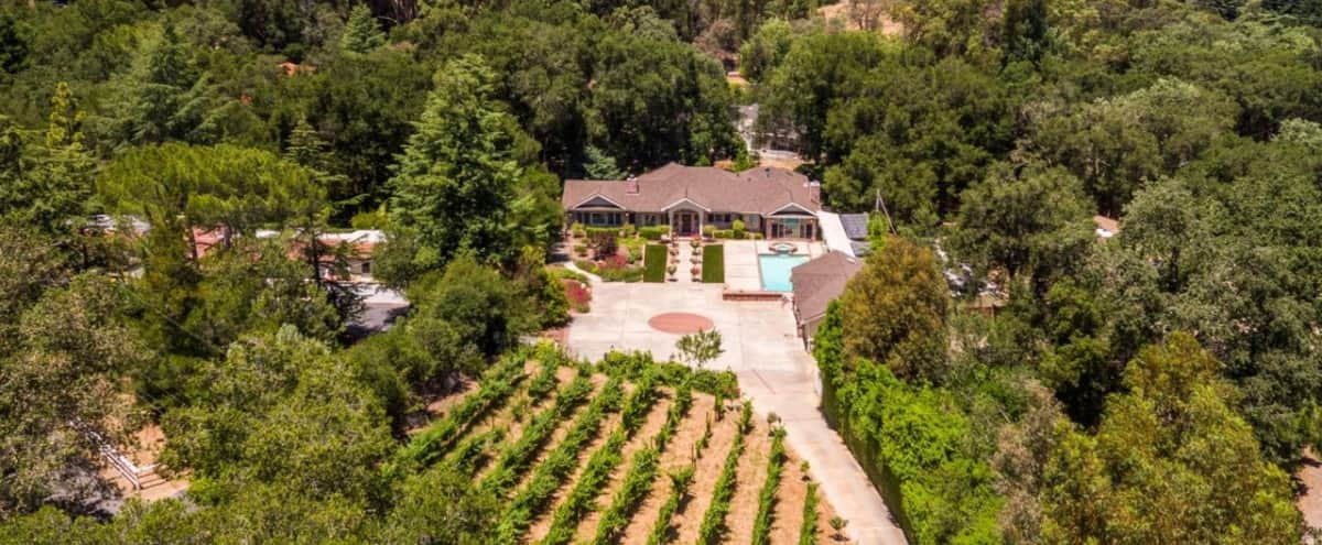 Patio, Pool, and Event Space on Private Vineyard Property in Los Gatos Hero Image in undefined, Los Gatos, CA