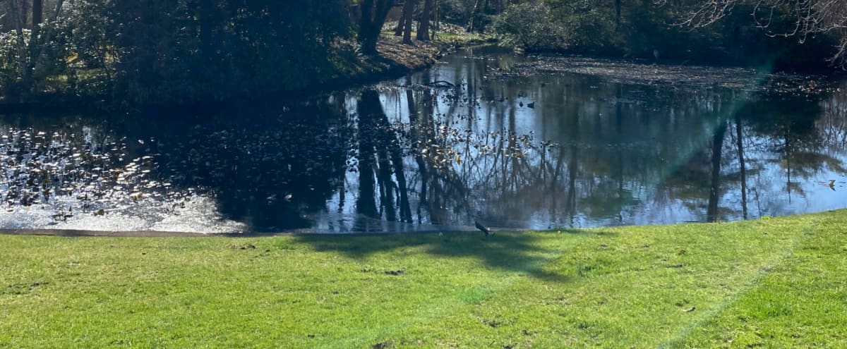 Beautiful Backyard with Breathtaking Lake in Baldwin Hero Image in undefined, Baldwin, NY