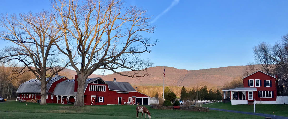 40 Acres Dutch Barn & Animal Sanctuary in Catskills Hero Image in undefined, Catskills, NY