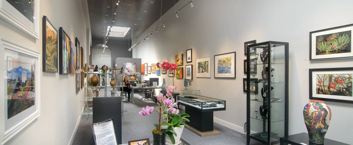 Inner Sunset Spacious, Light-filled Contemporary Art Gallery in San Francisco Hero Image in Inner Sunset, San Francisco, CA