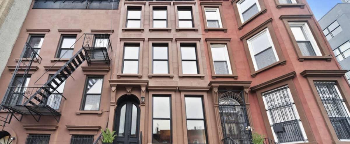 Modern Urban Brooklyn townhouse with outdoor space in Brooklyn Hero Image in Bedford-Stuyvesant, Brooklyn, NY