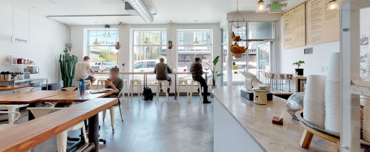 Large, Open Cafe with Natural Lighting + Sound Tiles in Portland Hero Image in North Portland, Portland, OR