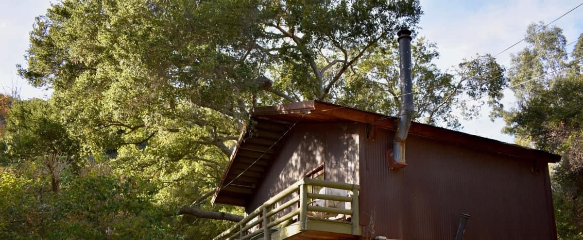 Artist studio/ Treehouse Cabin on Bucolic Property in Topanga Hero Image in undefined, Topanga, CA