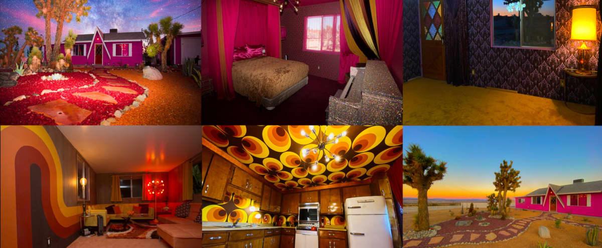 Pink 70's Retro Joshua Tree House ***HUGE 5 Acre property*** in Los Angeles Hero Image in Central LA, Los Angeles, CA