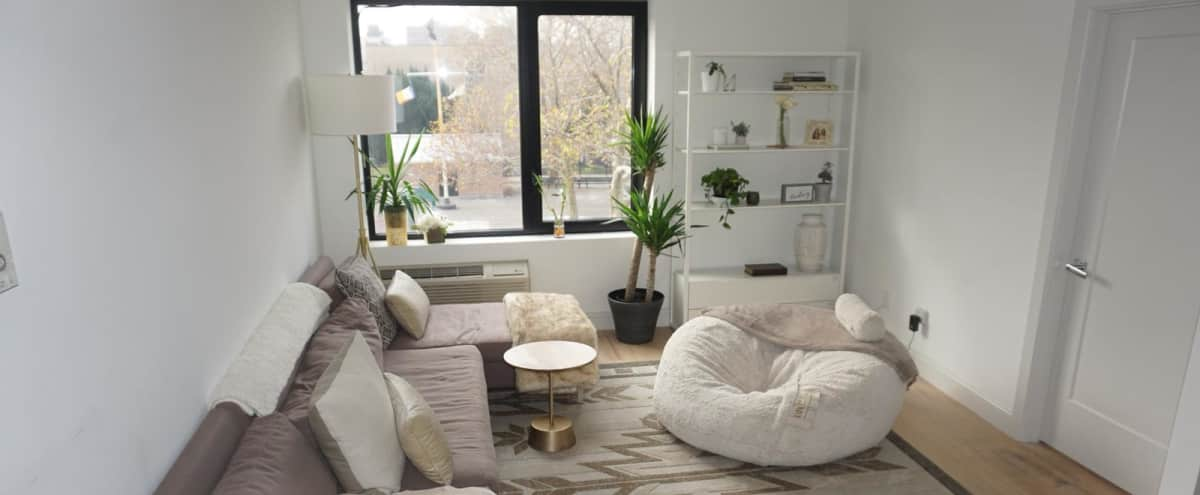 Chic, modern minimalism in an open luxurious space | large windows & tons of natural light! in Brooklyn Hero Image in Bedford-Stuyvesant, Brooklyn, NY