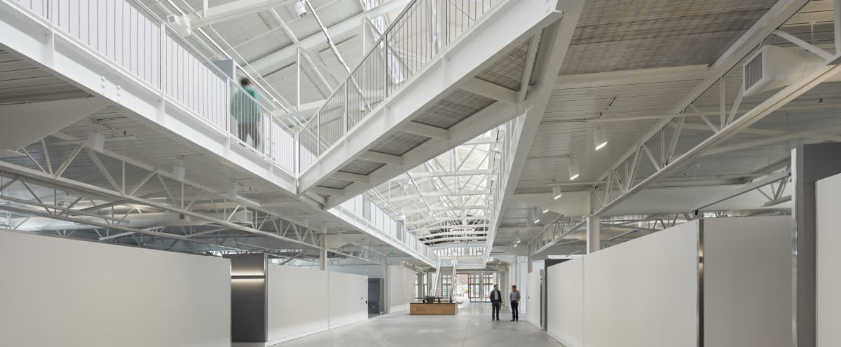 Multi-Purpose Gallery with Beautiful Lofty Ceilings in San Francisco Hero Image in Fort Mason, San Francisco, CA