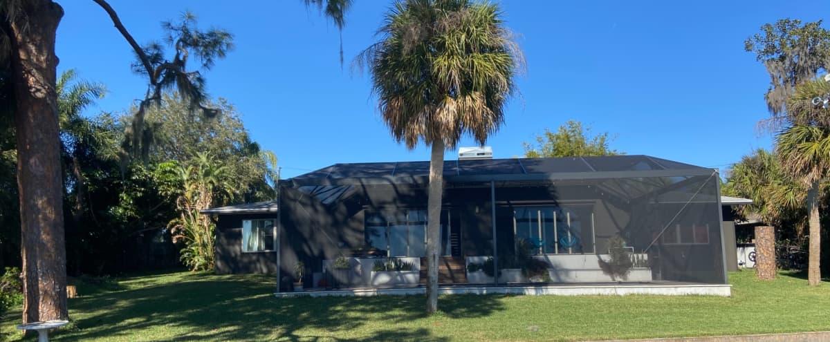 Lakefront Mid-Century Modern Oasis in Tarpon Springs Hero Image in undefined, Tarpon Springs, FL