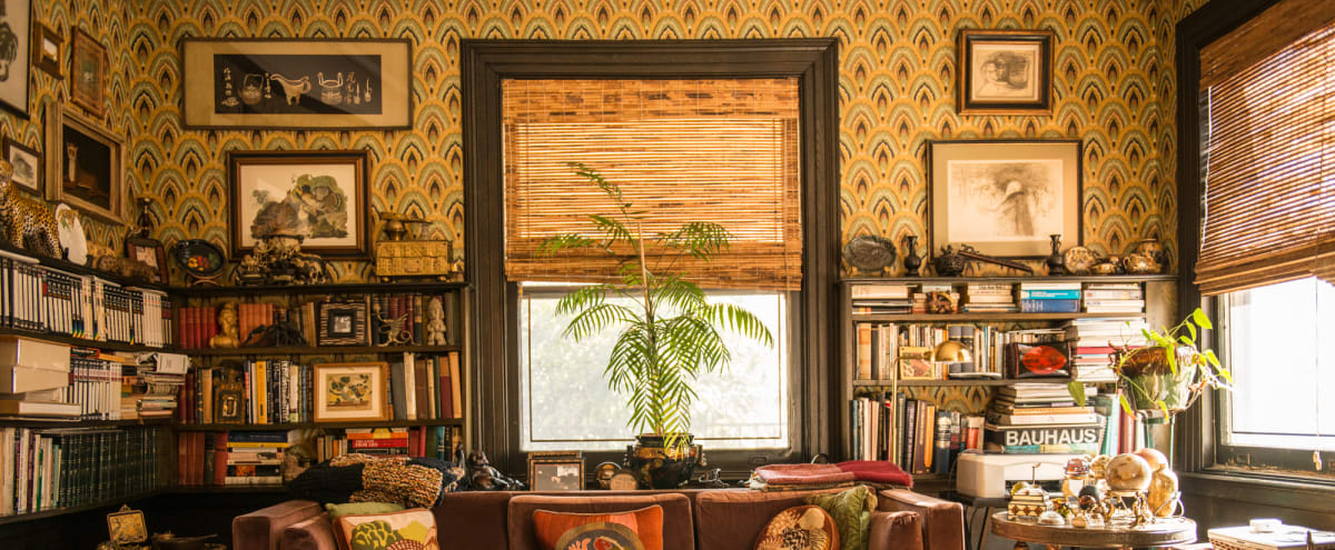 The Wallpaper Kingdom in Brooklyn Hero Image in Prospect Park South, Brooklyn, NY