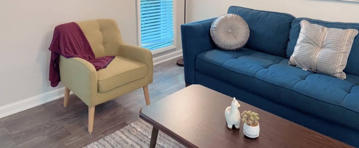 Cozy Modern City Apartment in Sandy Springs Hero Image in undefined, Sandy Springs, GA