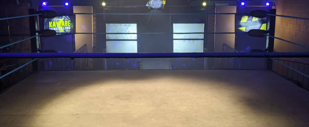 PRO WRESTLING or BOXING Show fight MMA WWE UFC RING GYM SPORTS in Burbank Hero Image in undefined, Burbank, CA