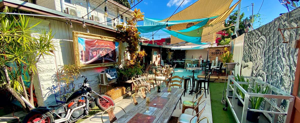 Magical, Bohemian, Native Space in the Heart of Miami's Art district in miami Hero Image in Edgewater, miami, FL