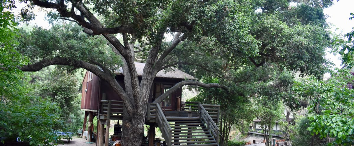 Treehouse Studio in Topanga Hero Image in undefined, Topanga, CA