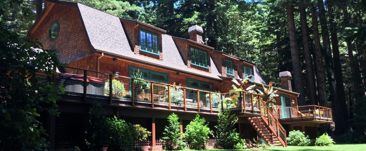 Redwood Retreat in Spacious Santa Cruz Home in Santa Cruz Hero Image in undefined, Santa Cruz, CA