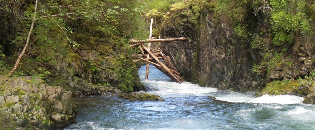 Stunning River Frontage in the Woods.                                     Best of the Pacific Northwest! in Yacolt Hero Image in undefined, Yacolt, WA