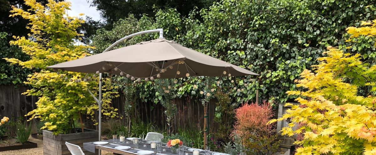 Palo Alto Warm Contemporary House with Beautiful Outdoor Living Space in Palo Alto Hero Image in Green Acres, Palo Alto, CA