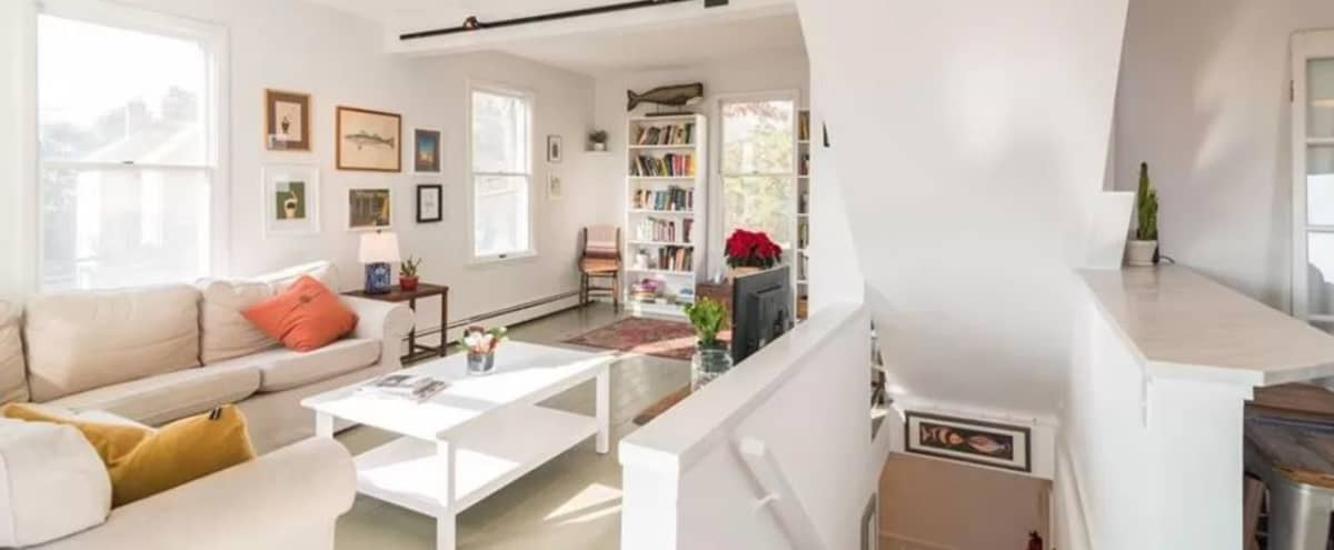 Charming, light-filled suburban home in Larchmont Hero Image in undefined, Larchmont, NY