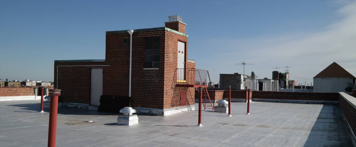 Open Brooklyn Rooftop in Brooklyn Hero Image in Flatbush - Ditmas Park, Brooklyn, NY