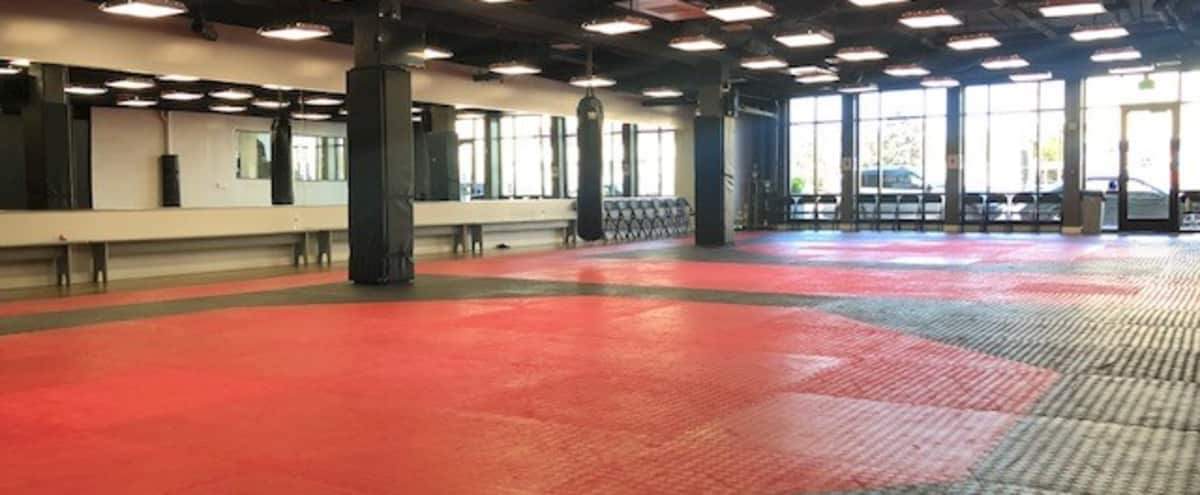 Taekwondo Gym - Bright and Spacious in Sherman Oaks Hero Image in Sherman Oaks, Sherman Oaks, CA