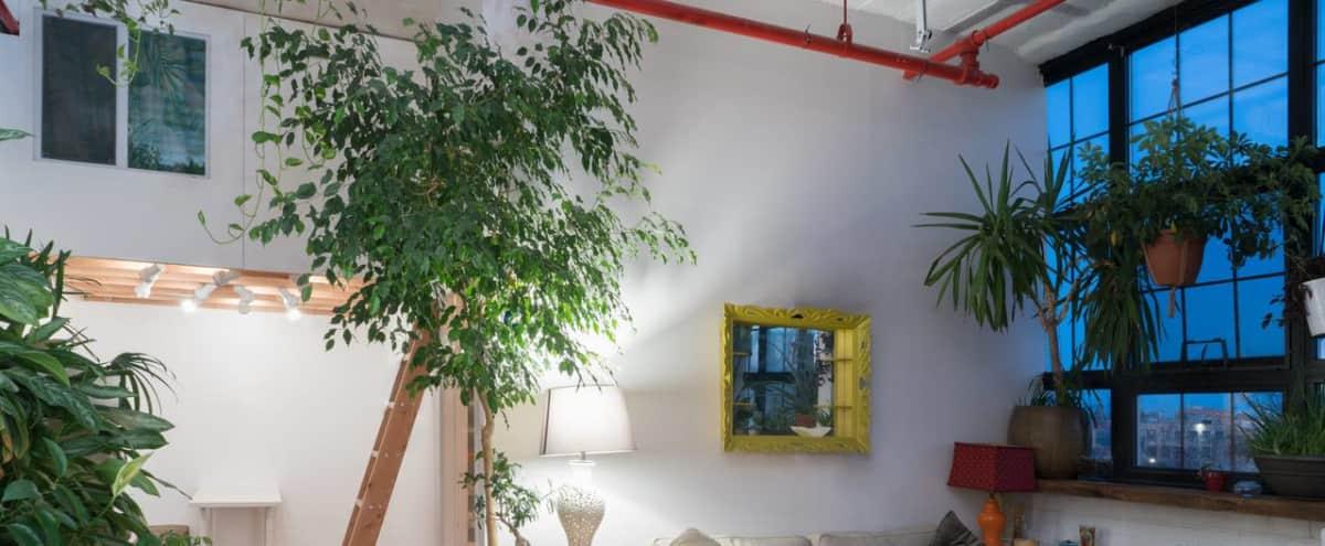 Bushwick Jungle Lounge in Brooklyn NY Hero Image in East Williamsburg, Brooklyn NY, NY