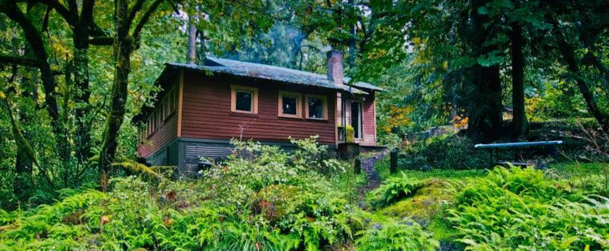 Meeting Retreat Location: Nestled in Nature Cabin & Lodge in Molalla Hero Image in undefined, Molalla, OR