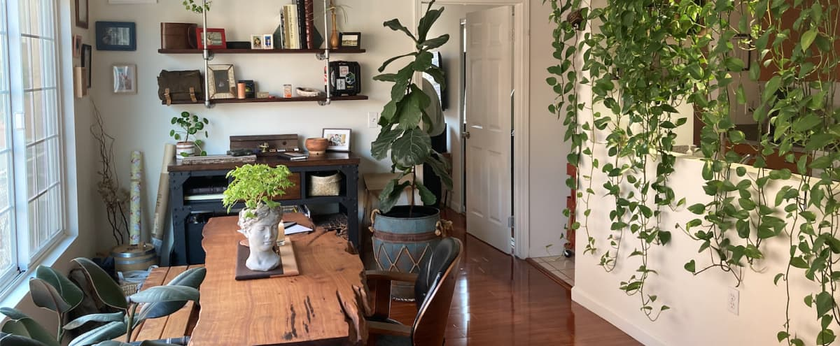 Charming Boho/Rustic Apartment at the Heart of Eagle Rock in Los Angeles Hero Image in Northeast Los Angeles, Los Angeles, CA