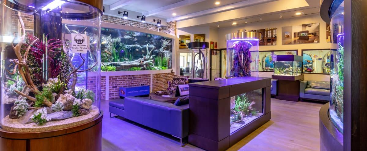 Multi-purpose Event Space - Aquarium Showroom - Uptown in Houston Hero Image in Mid-West, Houston, TX