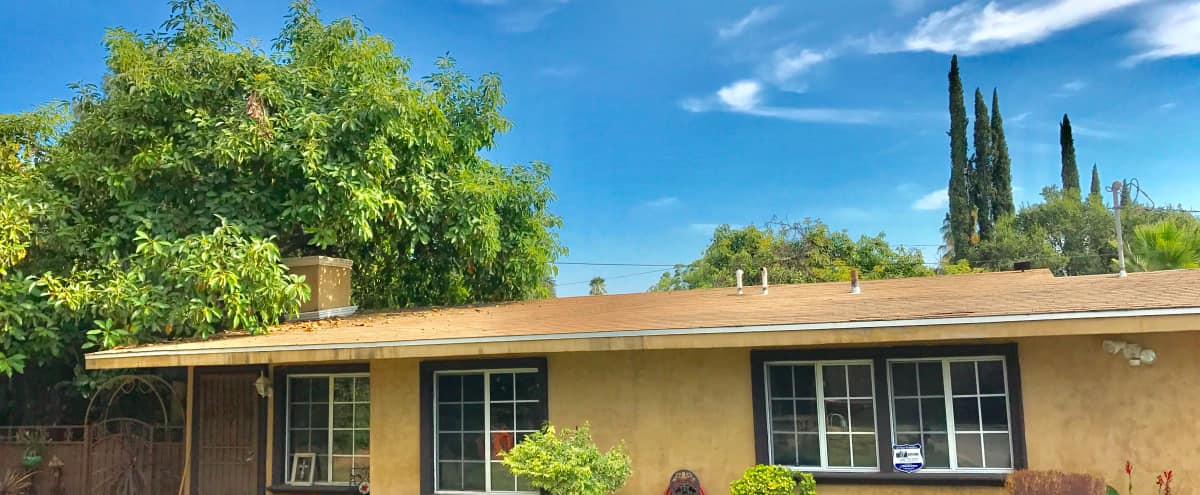 Great Home with Lots of Privacy & Outdoor Space in Altadena Hero Image in undefined, Altadena, CA