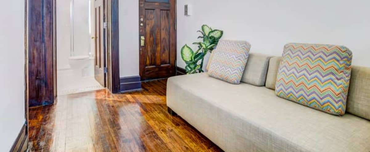 Classic Warm and Cozy Downtown Apartment in Detroit Hero Image in Midtown, Detroit, MI