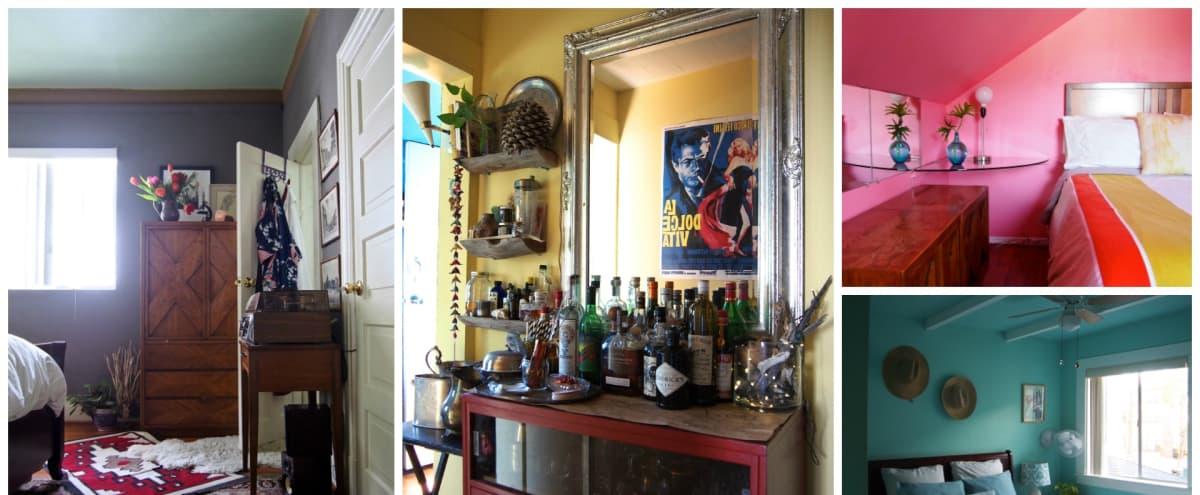 Colorful Artistic Gypsy Hideaway: 5 bedrooms, 2 kitchens, 3 bathrooms, dining room, living room, large attic in Los Angeles Hero Image in Westlake, Los Angeles, CA