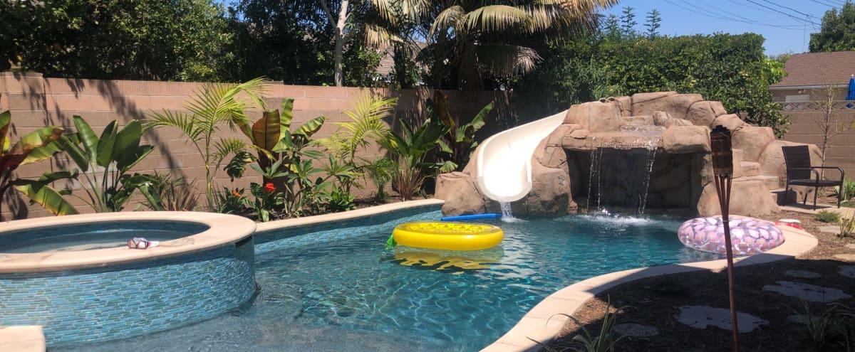 Tropical Backyard Pool Oasis in Los Alamitos Hero Image in undefined, Los Alamitos, CA