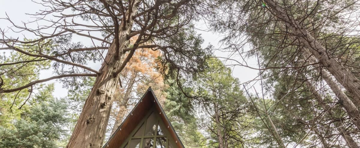 Vintage A-Frame Cabin with Forest Views in Skyforest Hero Image in undefined, Skyforest, CA