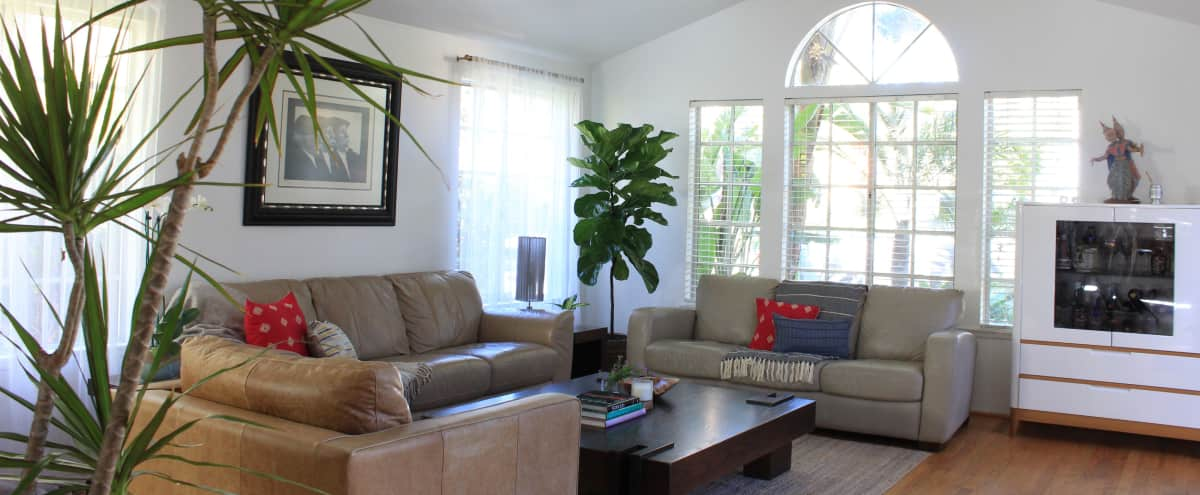 California Style Bungalow with Tree House Feel in Los Angeles Hero Image in Palms, Los Angeles, CA