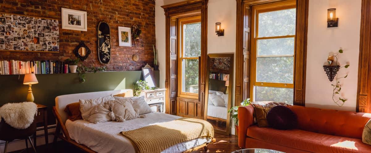 Warm Sunny Classic Brooklyn Pre-War Brownstone Apartment in Brooklyn Hero Image in Bedford-Stuyvesant, Brooklyn, NY