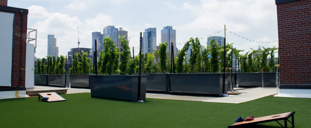 Rooftop Vineyard, 15,000 square feet, Amazing Views of Downtown Brooklyn in Brooklyn Hero Image in Brooklyn, Brooklyn, NY