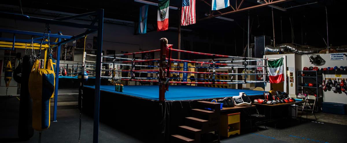 Boxing Gym in Arlington Hero Image in East Arlington, Arlington, TX