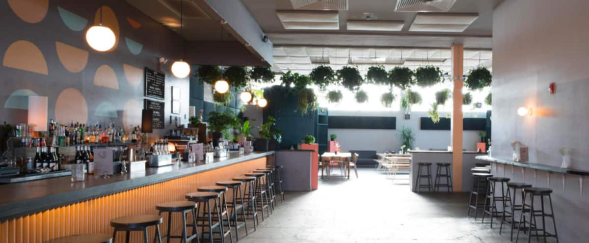 Plant-Filled Space with Bright Natural Light in Ridgewood Hero Image in Ridgewood, Ridgewood, NY