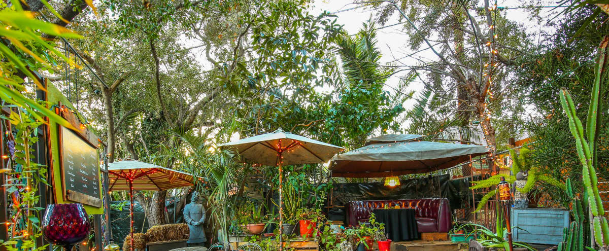 Enchanting Rainforest Event Space In The City in Los Feliz Hero Image in Los Feliz, Los Feliz, CA