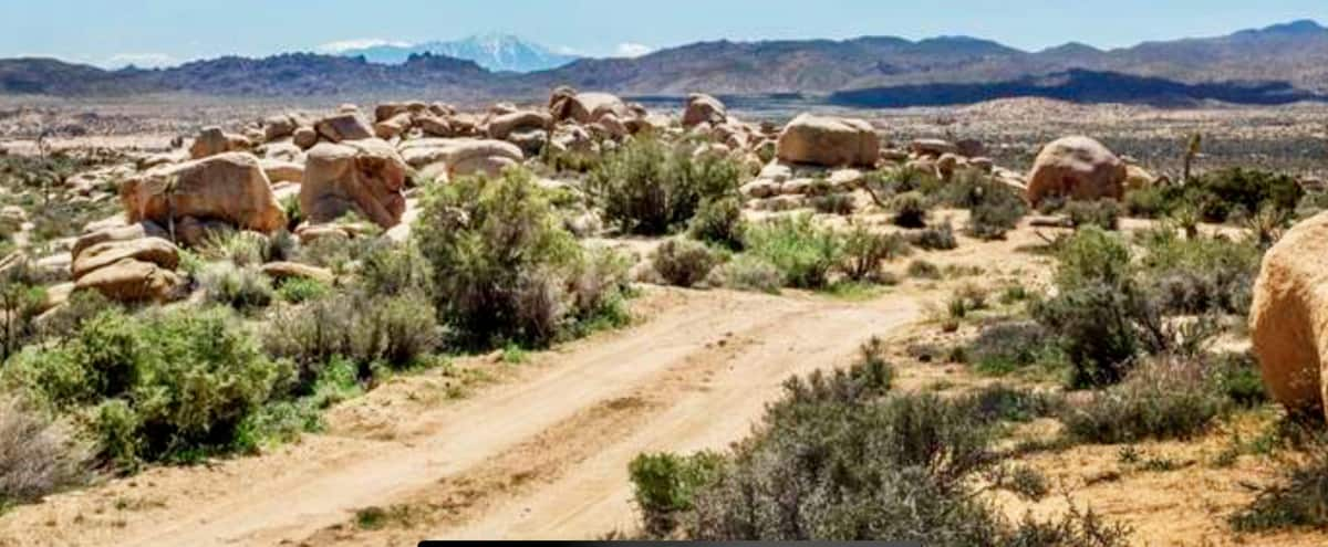 47 Acres of High Desert with Canyon & Mountain Views in Pioneertown Hero Image in undefined, Pioneertown, CA