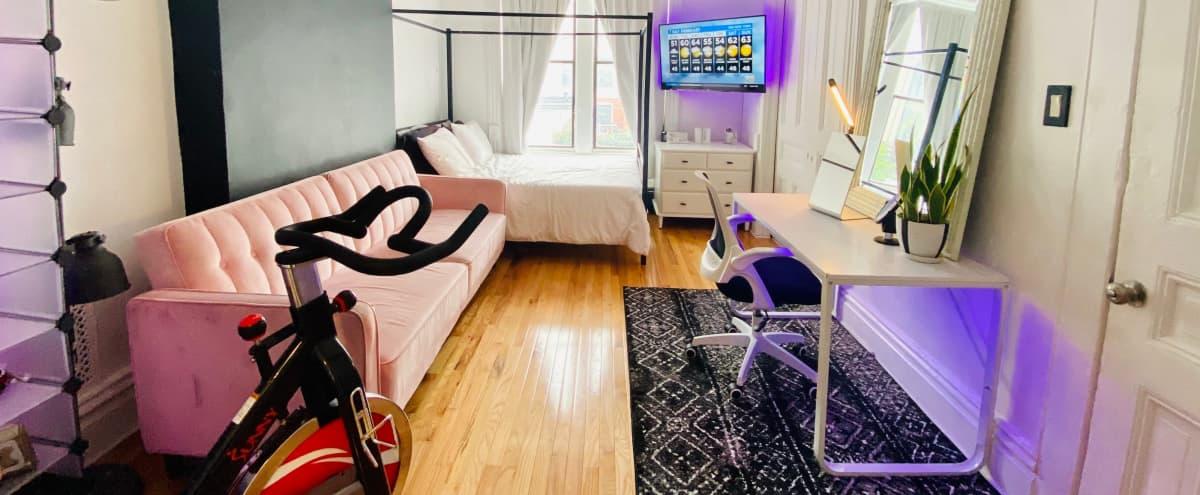 Brooklyn Bed-Stuy Brownstone Apartment in Brooklyn Hero Image in Ocean Hill, Brooklyn, NY