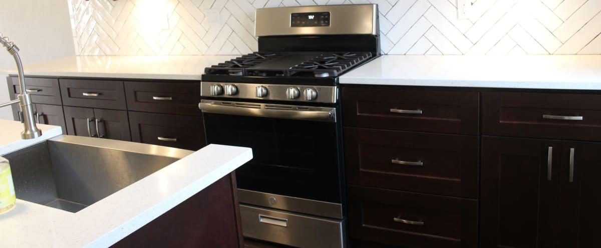 Charming Unfurnished Row Home with Chef's Kitchen in Washington Hero Image in Northeast Washington, Washington, DC