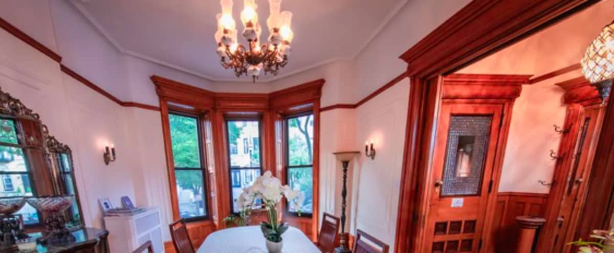 Authentic Brownstone with Multiple Rooms in Brooklyn Hero Image in Prospect-Lefferts Gardens Historic District, Brooklyn, NY