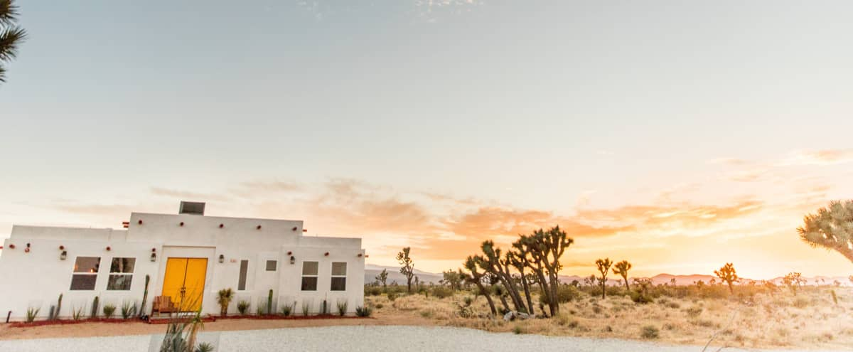 WILD WOLF RANCH in Yucca Valley Hero Image in undefined, Yucca Valley, CA